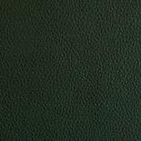 Leder Anilin grün a05
