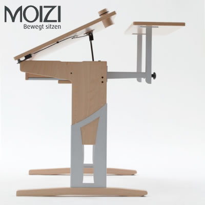 Moizi 17