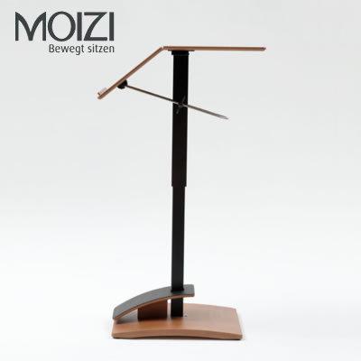Moizi 25