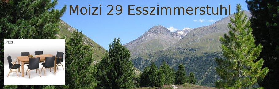 Moizi 29 Esszimmerstuhl