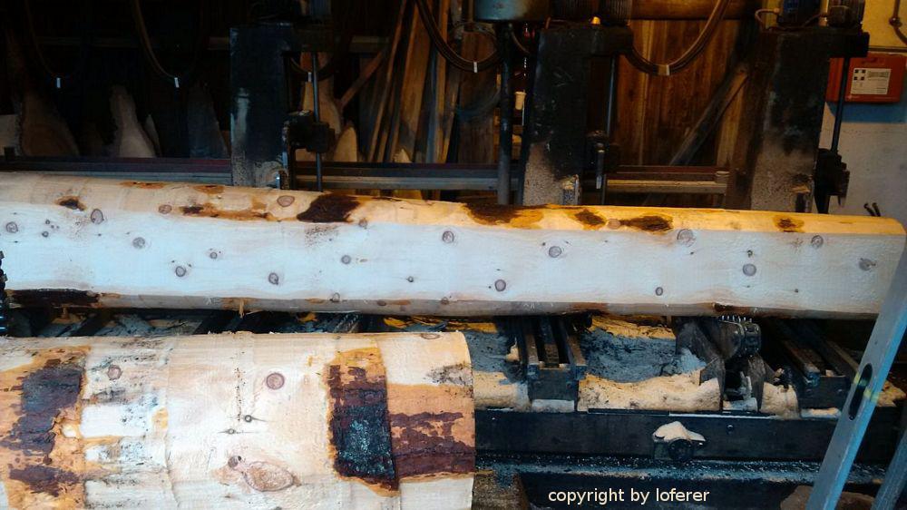 Zirbenholzeinschnitt